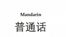 Chinese Mandarin lessons at school