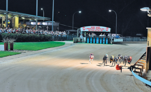 Gosford greyhound racing at the Gosford Showground