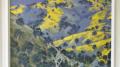 Jim Gibbons' winning piece 'Moonrise Macquarie Gorges'
