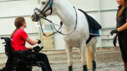 Special bonds form between rider and horse through the RDA