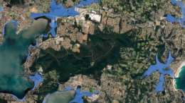 Maps produced by different levels of government are showing different levels of risk. The NSW Government's map (left) limits Coastal Hazards to beachfront suburbs (pink) but the Coastal Risk Australia map (right) shows many more areas at risk by 2100 at highest tide with sea level rise of 0.74m (blue)