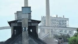Tip trucks (right) depositing coal on one of the outdoor mounds at Vales Point power station