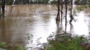 Part of the flood prone area that the NSW govt wish to turn into a rail maintenance facility.