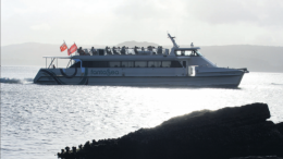 Palm Beach Ferry navigating the channel close to Lobster Beach