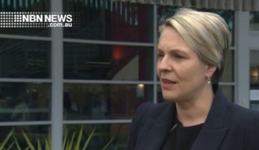 Tanya Plibersek , Deputy Leader of the Federal Labor
