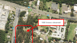 Recent example of mass urban tree removal at Erina. Image Google Maps