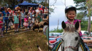 Much family fun to be had at the Mangrove Mountain Fair