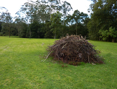 Open pile burning guidelines to be put out on exhibition