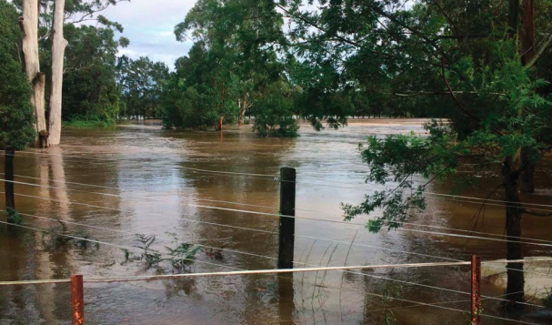 Flood prone land under water at Kangy Angy
