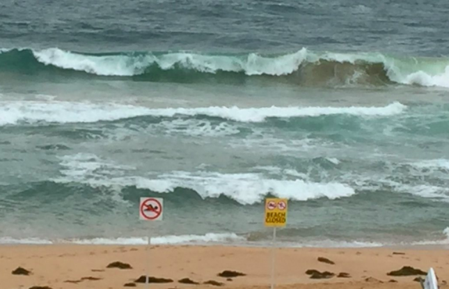 Central Coast beaches will likely be closed due to large swells