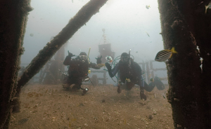 Two divers caught on camera as part of the VR shoot by Mal Yeo. Image: Mal Yeo