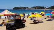 Terrigal Beach Umbrellas. Image; Terrigal Surf Life Saving Club