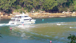 The Palm Beach ferry navigating the very narrow channel Photo: Wagstaffe to Killcare Community AssociationThe Palm Beach ferry navigating the very narrow channel Photo: Wagstaffe to Killcare Community Association