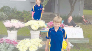 The traditional Mother's Day flower sale