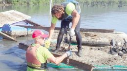Clean4Shore is helping coordinate the cleanup of oyster leases in Brisbane Water