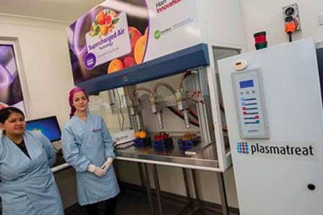 Food innovation at Ourimbah Campus