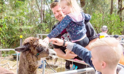 The Mangrove Mountain and Districts Country Fair is back