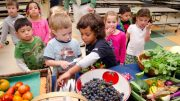 Kids and vegetable research participants. Wiki Commons licence: USDA Photo by Lance Cheung.