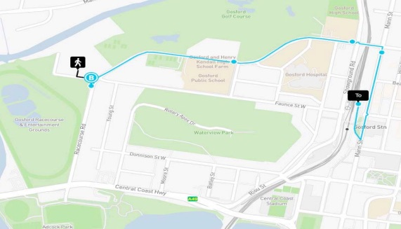 Park and ride bus route from proposed car parking sites on Racecourse Rd (site 3) and Faunce St West (site 7)