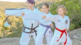 Taekwon-do fundraiser planned for December