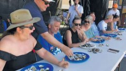 Oyster eating