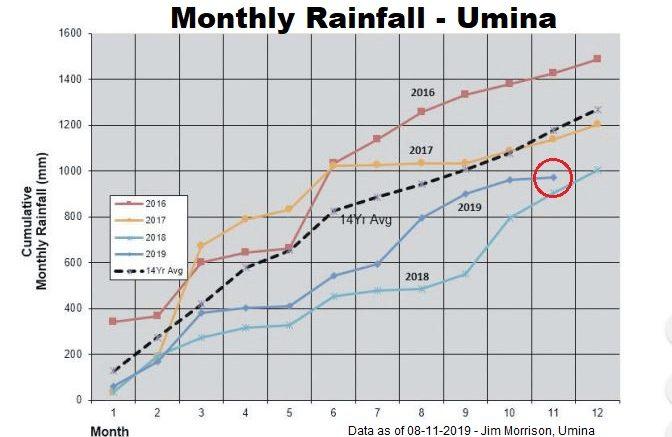 Rainfall, Umina, November 2019