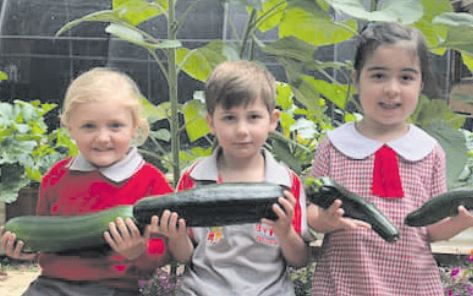 Garden club holds first produce sale - Central Coast Education News - Central Coast Community News